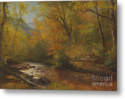 Brook In Woods Metal Print by Albert Bierstadt