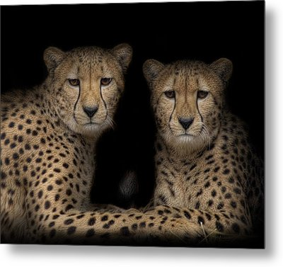 Brothers Metal Print by Cheri McEachin