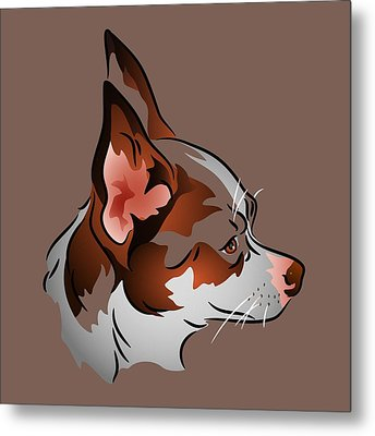 Brown And White Chihuahua In Profile Metal Print by MM Anderson