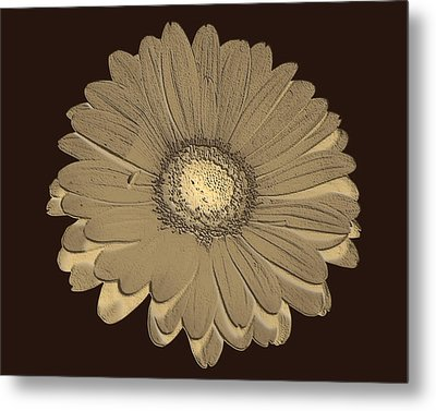 Metal Print featuring the digital art Brown Art by Milena Ilieva