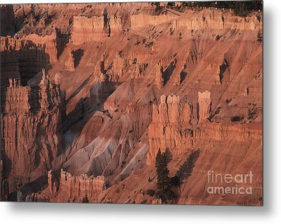 Bryce Canyon At The Golden Hour Metal Print by Stan and Anne Foster