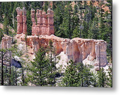 Metal Print featuring the photograph Bryce Canyon Backcountry by Bruce Gourley