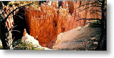 Bryce Canyon Metal Print by Fred Wilson