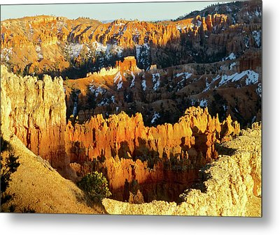 Bryce Canyon Hoodoos Evening Metal Print by Amelia Racca
