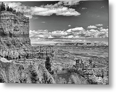 Bryce Canyon In Black And White Metal Print by Nancy Landry