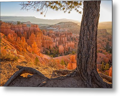 Bryce Canyon National Park Sunrise 2 - Utah Metal Print