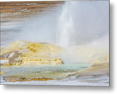 Metal Print featuring the photograph Bubbling Earth by Colleen Coccia