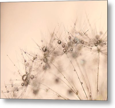 Bubbly Metal Print by Amy Tyler