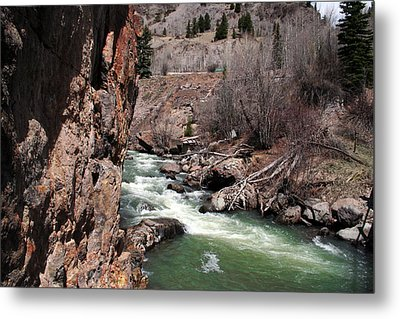 Buck In The Rapids Metal Print