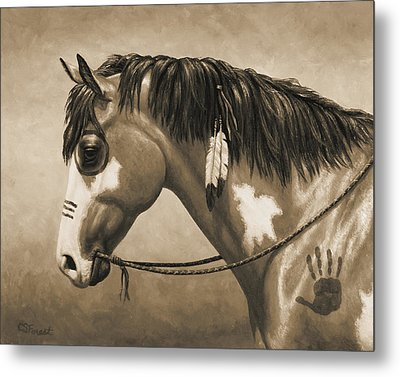 Buckskin War Horse In Sepia Metal Print