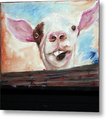 Bucktooth'd Goat Part Of Barnyard Series Metal Print