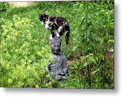 Metal Print featuring the photograph Buddha And Friend by Cynthia Lassiter