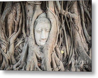 Buddha Head At Wat Mahatat Temple Metal Print by MotHaiBaPhoto Prints