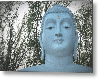 Buddha Nature Metal Print by Terry DeLuco