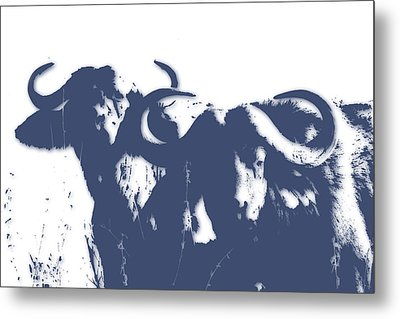 Buffalo 2 Metal Print by Joe Hamilton
