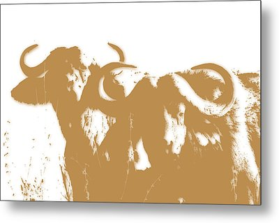 Buffalo 3 Metal Print by Joe Hamilton