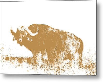 Buffalo 4 Metal Print by Joe Hamilton