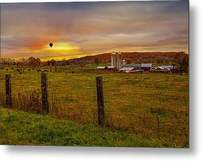 Buffalo Farm Sunset Metal Print by Susan Candelario
