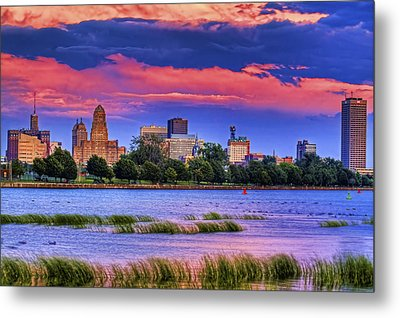 Metal Print featuring the photograph Buffalo In Pastels by Don Nieman