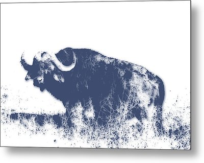 Buffalo Metal Print by Joe Hamilton