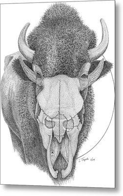 Buffalo Metal Print by Lawrence Tripoli