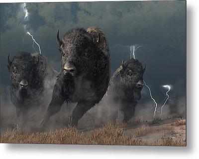 Buffalo Storm Metal Print