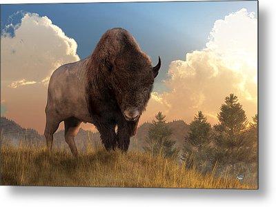 Buffalo Sunset Metal Print by Daniel Eskridge