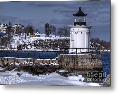 Bug Light In Winter Metal Print