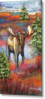 Bull Moose In Fall Metal Print by Tracey Hunnewell