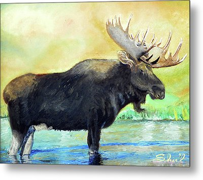 Metal Print featuring the painting Bull Moose In Mid Stream by Sherril Porter