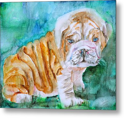 Metal Print featuring the painting Bulldog Cub  - Watercolor Portrait by Fabrizio Cassetta