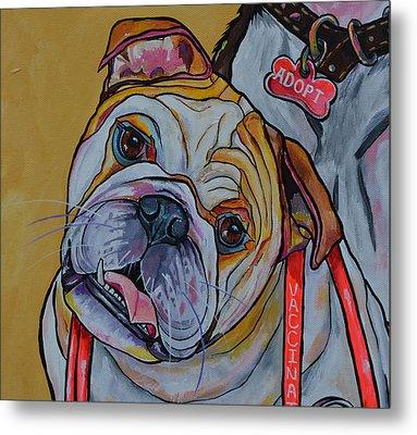 Bulldog Metal Print by Patti Schermerhorn