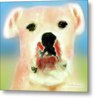 Bulldog Rana Art 59 Metal Print