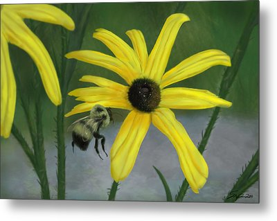 Bumble Bee Metal Print by Steven Powers SMP