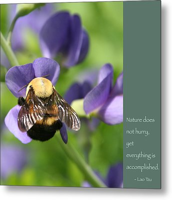 Bumble Bee With Zen Quote Metal Print by Heidi Hermes