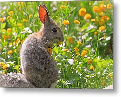 Bunny Brunch Metal Print by Donna Kennedy