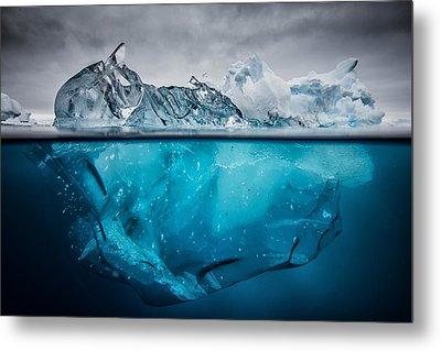 Buoyancy Metal Print by Justin Hofman