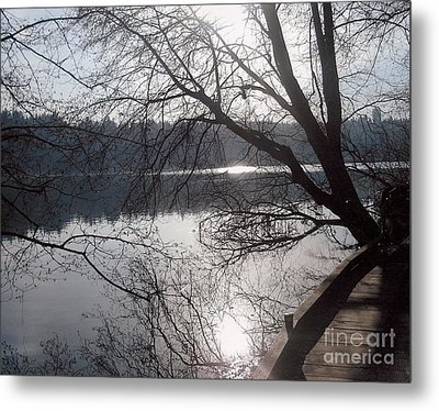 Burnaby Walk Metal Print by Kim Prowse