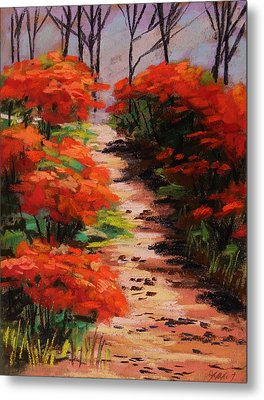 Burning Bush Along The Lane Metal Print by John Williams