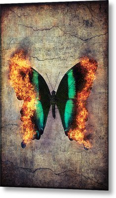 Burning Butterfly Metal Print