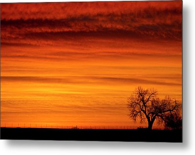Burning Country Sky Metal Print by James BO  Insogna