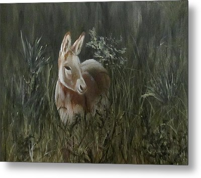Metal Print featuring the painting Burro In The Wild by Roseann Gilmore