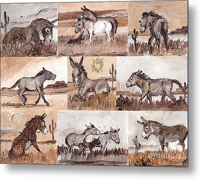 Burros Of The South West Sampler Metal Print