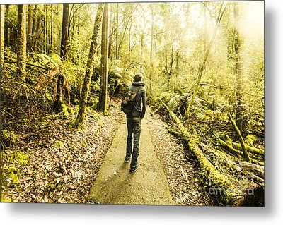 Metal Print featuring the photograph Bushwalking Tasmania by Jorgo Photography - Wall Art Gallery