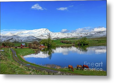Metal Print featuring the photograph Butte Farm After Spring Snow by Robert Bales