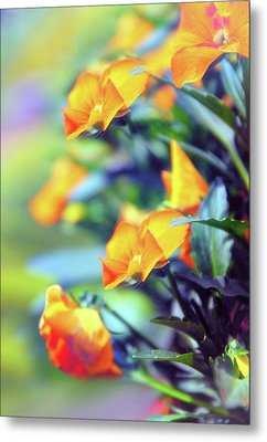 Metal Print featuring the photograph Buttercups by Jessica Jenney