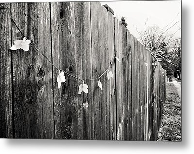 Metal Print featuring the photograph Butterflies On A Rustic Fence by Jeanette O'Toole
