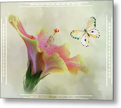 Butterfly And Fiesta Hibiscus Metal Print