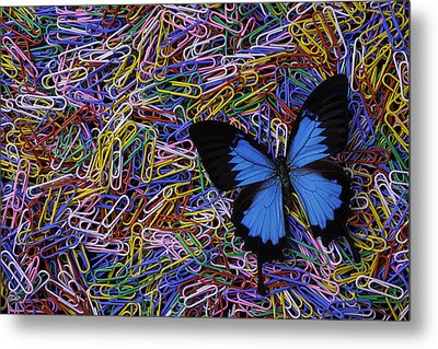 Butterfly And Paperclips Metal Print