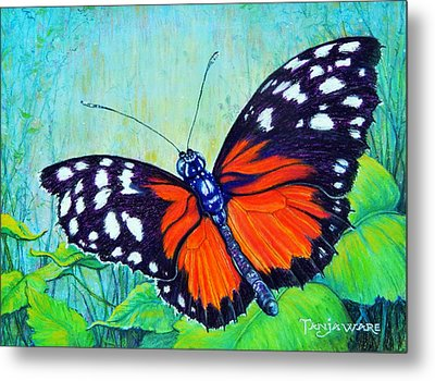 Butterfly Beauty Metal Print